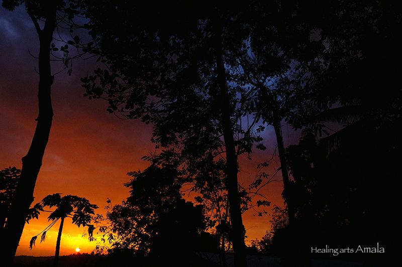 ケララ、シヴァナンダヨガ、夕日。